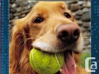McGrowl books by Bob Balaban Thomas goes on canine