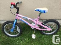 Has coaster brake and rear hand brake, bell, and chain