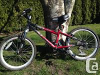 Like new: 20 Inch Narco Ninja Mountain Bike, 18 Speed,