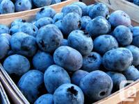 T&S Mankatala Farm is offering FRESH blueberries and