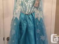 Disney Store Frozen  Queen Elsa costume dress with