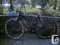 Full carbon Norco CRR2 with clear coat paint that