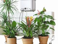 Keep plants watered while you are away, without