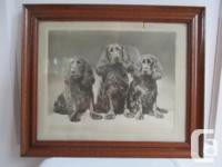 Beautiful Old Oak Framed and Matted Black and White