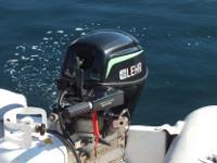 Lehr LP Outboard Engine 9.9hp 4 Stroke Short Shaft