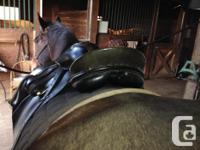 """17.5"""" black Passier Grand Gilbert dressage saddle for"""