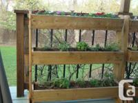 Booking orders for patio planters. Ideal for growing