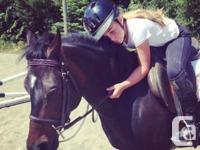 Beginner PONY rides!!! Starting at ages 3 and up. We
