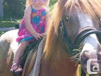 Pony Ride / Petting Zoo parties available to travel to