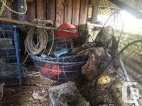 Complete set up with 300 ft leaded line, bait basket,