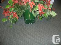 BEAUTIFUL FLOWERS FOR DECORATING, $10.00 EACH APPROX.