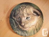Lovable coated plate collection of kitties of crazy