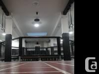 -Full UFC Regulation size cage -Includes Zebra Mats, used for sale  British Columbia