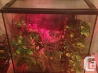 As I am forced to buy larger tanks for some of my snake