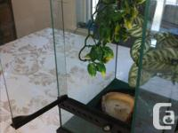 I have Reptile enclosure, ready to go (Set up required)