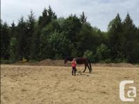 110 x 60 Sand riding rent for monthly rental 30$ or