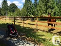 Horse Board Located in Chemainus Excellent opportunity