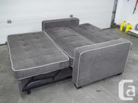 1 year old Serta Convertible sofa lounger bed. pet and
