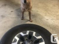 Set of 4 tires on rims and an extra rim without a tire.