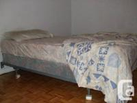 Single Bed (mattress, spring box, frame, 2 pillows).