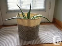 Set of 3 Nesting baskets for plants or other household