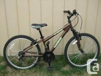 Norco Detonator 2010 mtb. Ideal for young people or