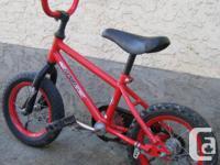 Sportek - Li'l Bandit bike with 12 inch tires This