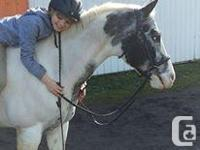 Still a few spaces left in pony camp for the first week