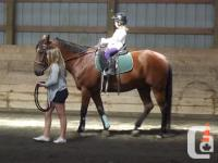 SUMMER RIDING CAMPS - Monday to Friday, 9:00 am to 1:00