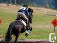 Central Island Equestrian Center is running 3 camps