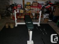 A full size strong Expert weight bench and weights