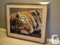 FRAMED print of a Tiger Sleeping. Name of Print: