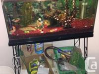 30 gallon Aquarium collection. Complete with stand,
