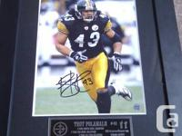 This autographed framed 8x10 photo of Troy Polamalu