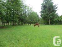 Full Horse Board available on 5 acre hobby Farm $400