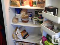 This is a Frigidaire upright freezer purchased from the