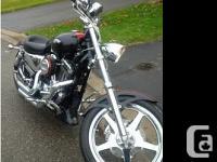 2007 Harley Davidson XL1200C Sportster Custom. 2007 HD