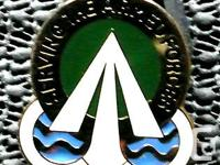 Serving the Armed Forces Pin - V 21 Made in the USA