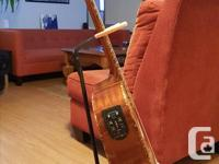 Nice starter guitar, plays great and in good shape (a