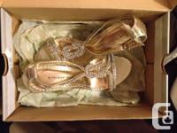 -Destination Wedding Planner $15 (Purchased this but