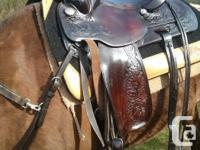 Circle Y western pleasure trail saddle. FQB, dark oil,