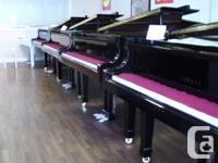 Yamaha professional C3 Consevatory Grand Piano.