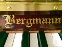 Bergman Heritage series, Model E118, Prestige