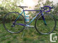 LEONARD CUSTOM ZINN USA 16 speed Racing Bike re-built
